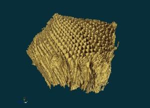 wood-nano-ct-crop2